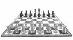 Įstaigoje lankėsi šachmatų didmeistris