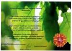 Kalėjimų departamento prie Lietuvos Respublikos teisingumo ministerijos direktoriaus sveikinimas Pataisos pareigūnų profesinės šventės ir Lietuvos bausmių vykdymo sistemos 99-ųjų įkūrimo metinių proga