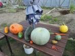Rudens lygiadienio šventė 3-io sektoriaus soduose