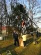 Pusiaukelės namų nuteistieji vyko puošti Kruonio miestelio kalėdinės eglės