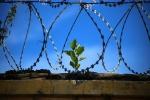 Pokyčiai bausmių vykdymo sistemoje jau nuo šiandien