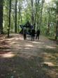Išvyka į Vidzgirio botaninį draustinį