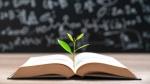 Ketinama reformuoti pataisos įstaigas – turi atsirasti dar bent dvi naujos